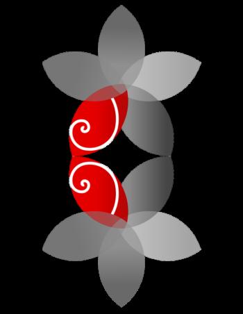 logo5dgreymirrored2 1